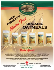image of 01 - Gluten Free Product Launch Brochure